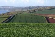 Farmland from The Beacon