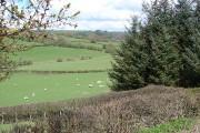 Farmland near Hiriaeth