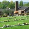 Brimington Crematorium