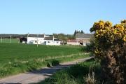 Blackhillock Farm