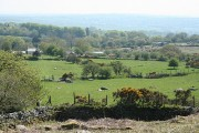 Dartmoor: settlement at Heckwood