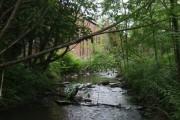 River Stour upstream at Hayseech