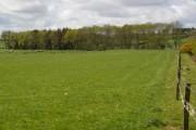 Farmland & Forestry near Brackenside