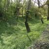 Brimpsfield castle remains