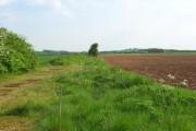Farmland, Chilbolton