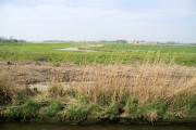 Farmland by the River Chet