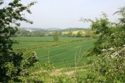 The Erewash Valley from the Nottingham Canal Nature Reserve