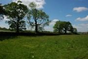 Farmland near Weeke