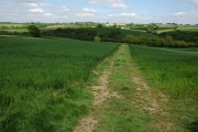Farmland at Oldborough