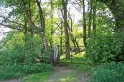 Entrance to Birks Wood, Oughtibridge, from Skelton Rise