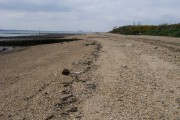 Hamble-le-rice Beach