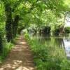 River Wey Navigation near Byfleet