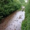 Downpour near Dainton