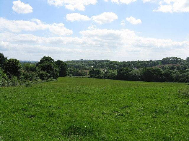 Hope End Farm - grassland