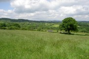 More Farmland near Llanfynydd!