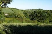 View beside Longpark Linhay