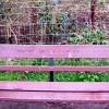 Inscription on seat by lock 2, Droitwich Barge Canal
