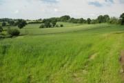 Farmland above Green Street
