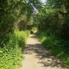 Cycleway/Path at Parc Slip Nature Reserve