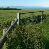 Farmland overlooking the Channel and toward North Devon