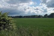 Farmland with the fence to the East Coast Main rail line