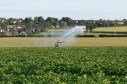 Watering the fields