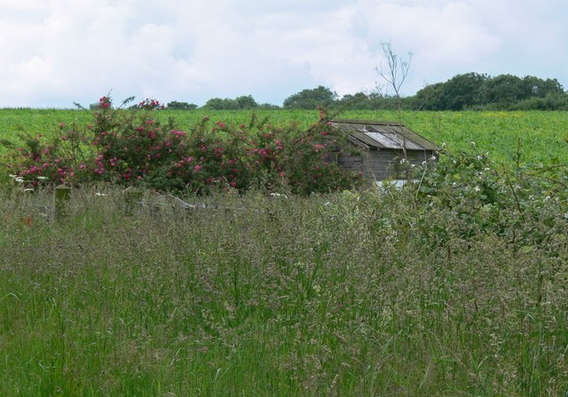 Farmland near Wanlip Hill Farm, Leicestershire