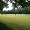 Harvest of grass