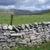 Stone wall and pasture alongside Fell Lane
