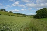 Farmland at Bottom Shaw
