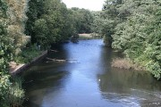 River Maun at Kings Mill
