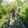 Footbridge at Ythanbank