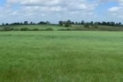 Farmland alongside the A5199 Welford Road