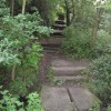 New Whittington - Footpath View of Brook Crossing and Steps
