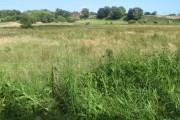 Towards Hollam Hill Farm