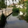 Sunningwell pond