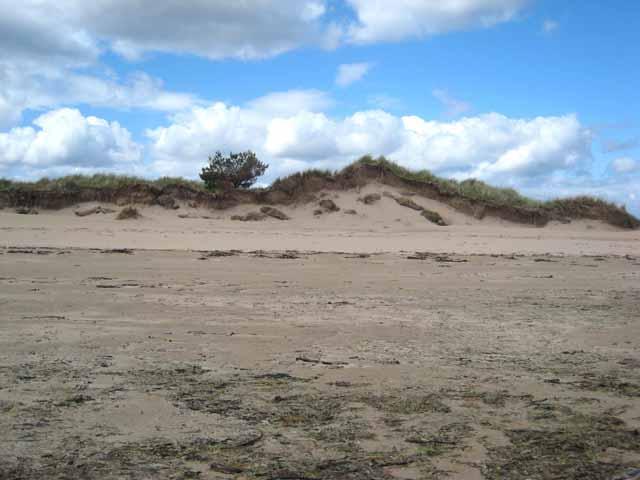 Sand Cliff near Dornoch Point