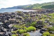Shore of Loch na Faolinn
