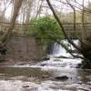 Bridge and weir Wepre Park