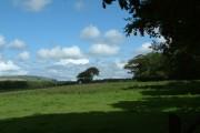 Farmland near Arlington Court