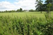Farmland north of Boddington