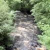 River Twiss at Ingleton