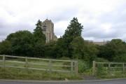 Caxton church through the trees