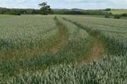 Farmland north of Tugby
