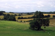 Arable and pastoral