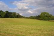 Farmland, Longstock