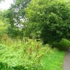 Footpath onto Littlemarsh Common