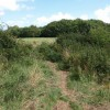 Path near Roselands estate