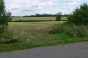 Farmland near Saxelbye