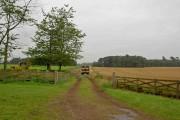 Trailer and digger near Perlthorpe